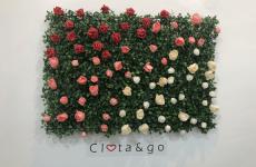 Clota&go