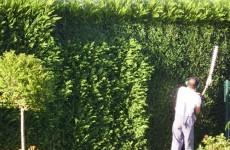 J.M. Manser Mantenimientos y Jardines