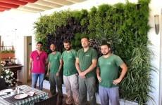 Myd Jardines Paisajismo