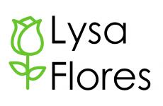 Floristería Lysa Flores
