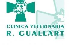 Clínica Veterinaria Raquel Guallart
