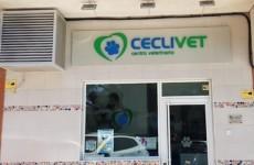 Centro Veterinario Ceclivet