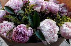 Floristería Rosas del Agavanzal