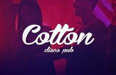 Disco Pub Cotton