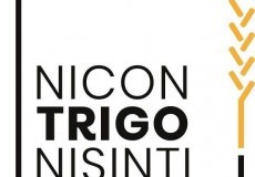Restaurante Nicontrigonisinti