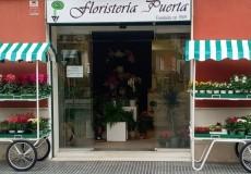 Floristería Puerta