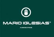 Mario Iglesias Asesores