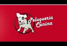 Peluquería Canina Calbuco