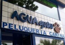 Agua Guau