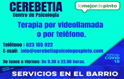 Cerebetia   Psicólogos Pinto