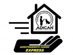 ADICAN - Adiestrador Canino