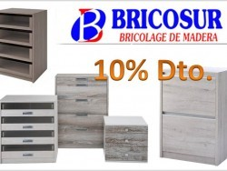 Bricosur