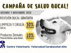 Centro Veterinario Vetersalud Carabanchel Alto