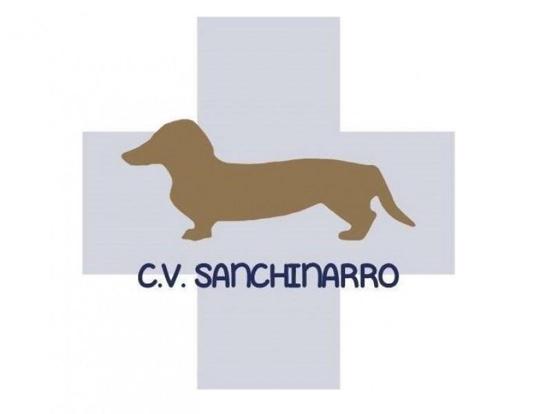C.V. Sanchinarro Madrid