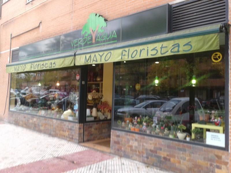 Mayo Floristas comentarios