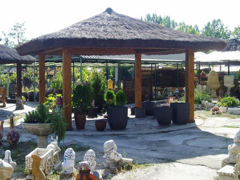 Brezo Jardín