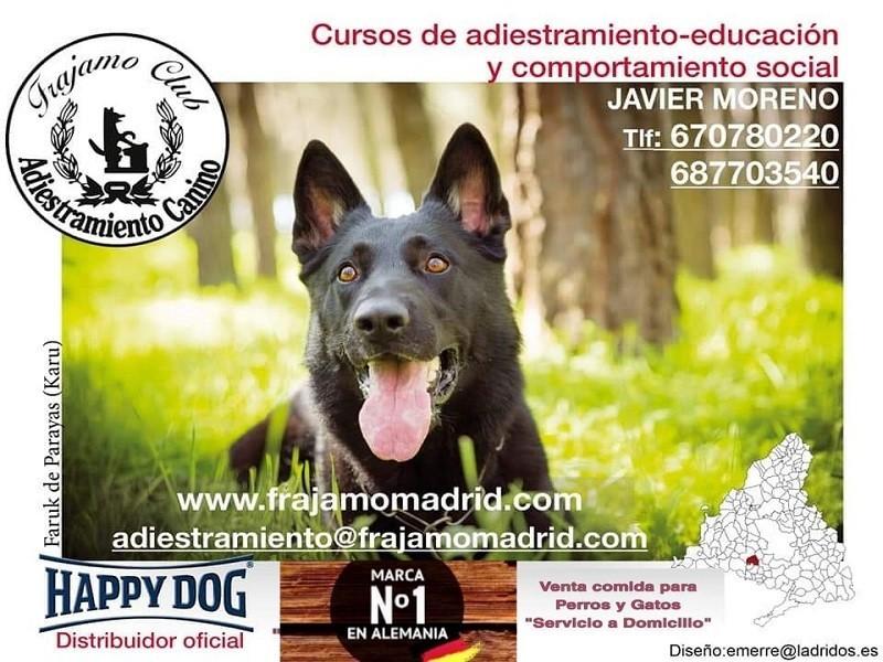 Club De Educación y Adiestramiento, Frajamo Madrid Móstoles