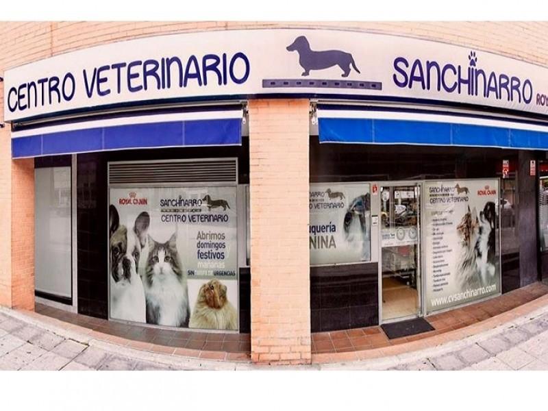 C.V. Sanchinarro