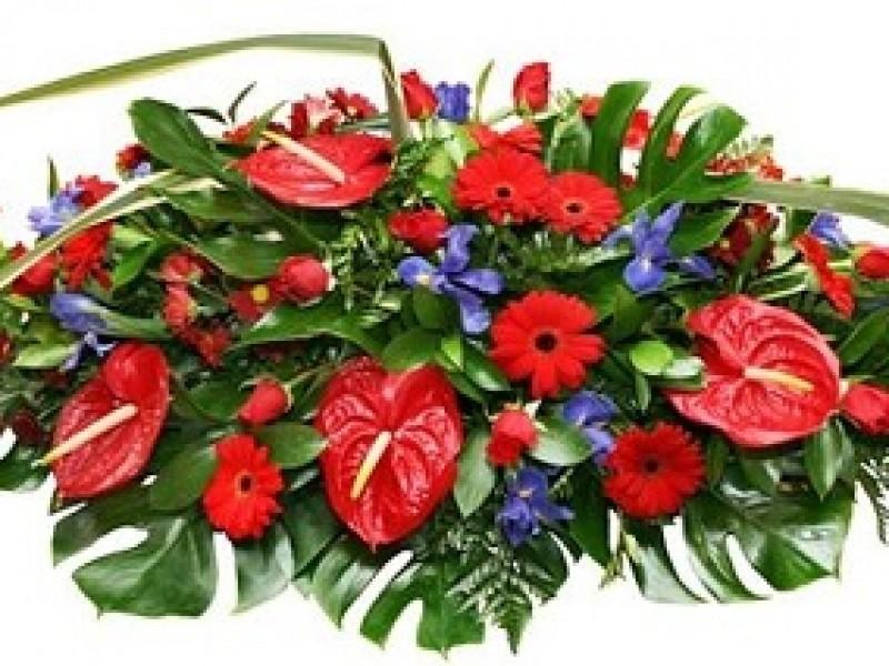 Mayo Floristas Alcobendas