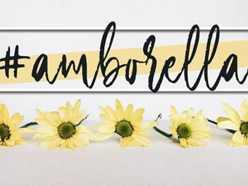 Amborella Artesanía Floral